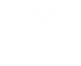 Oak Group